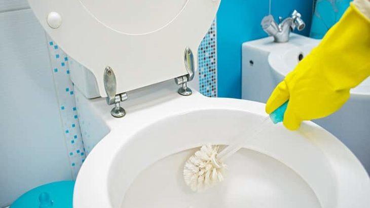 Como Limpar um Vaso Sanitário